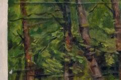 Opgeprikt doek (van A.M. G. )1976 60x50