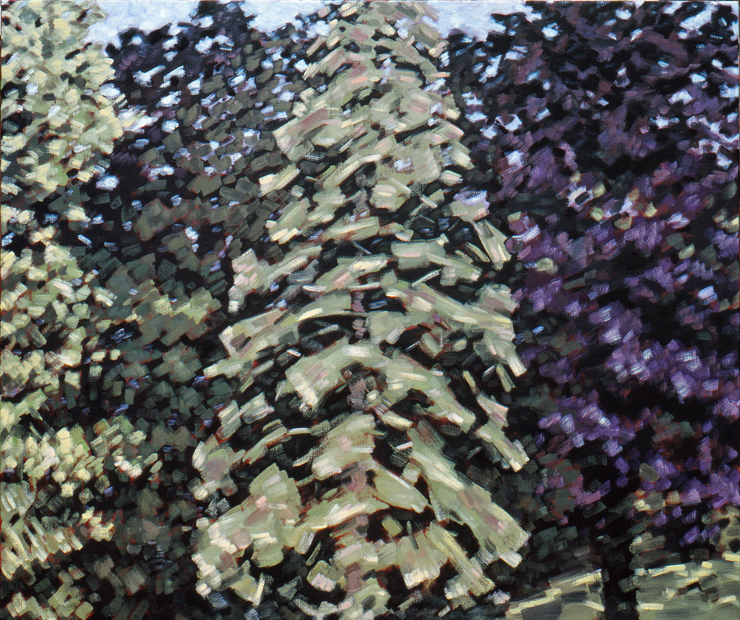 Drie bomen 1979 100x120 cm
